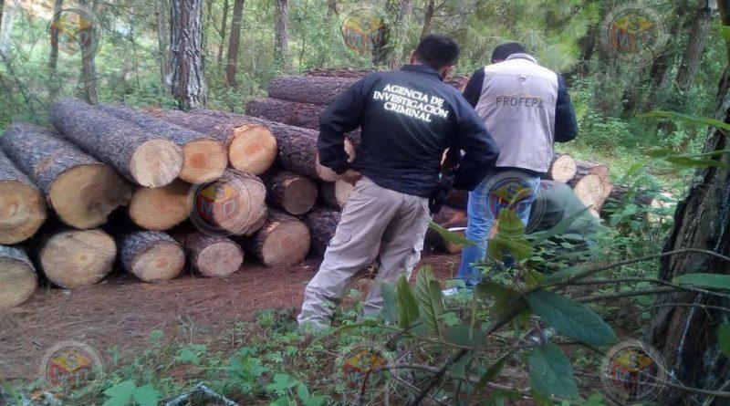Profepa detecta ilegal cambio de uso de suelo en Villa Madero