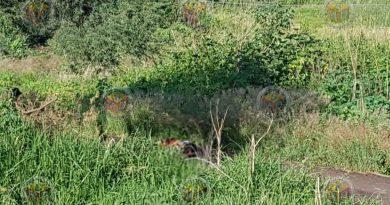 Abandonan cadáver en brecha del panteón de Chaparaco
